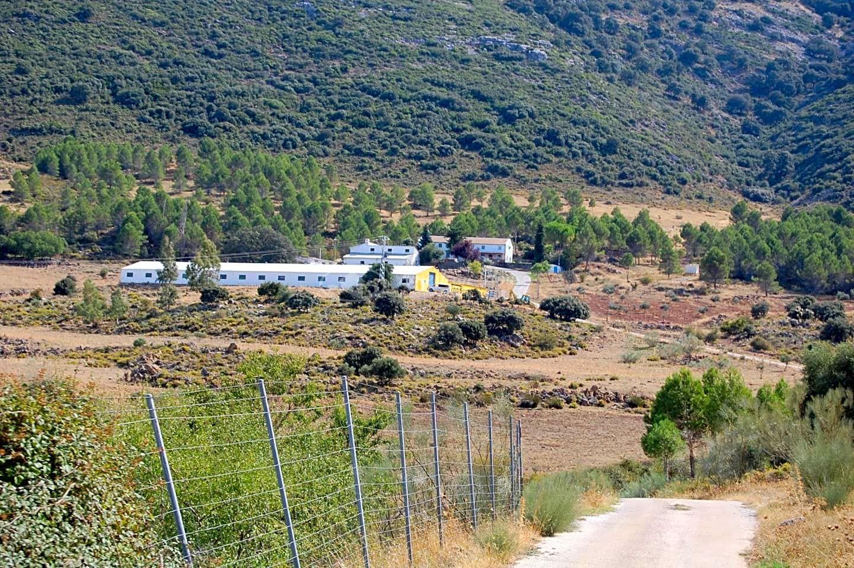 Propiedad única de 1.000 Ha en venta para convertirla en un complejo turístico en la Sierra de Ronda, Málaga